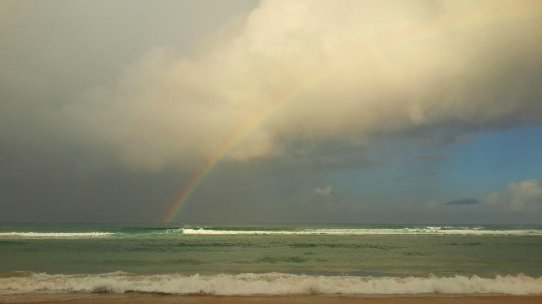 Arco íris depois da chuva  |  Rainbow after the rain